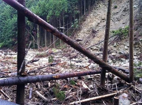 会社近くの木材搬出風景 012.jpg