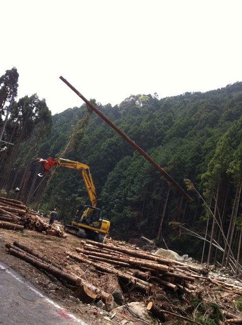 会社近くの木材搬出風景 016.jpg