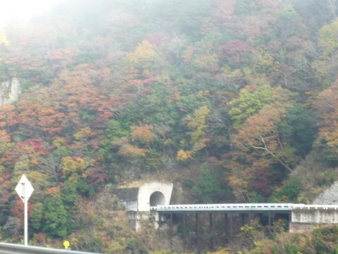 2009年11月26日金閣寺北野天満宮 003.jpg