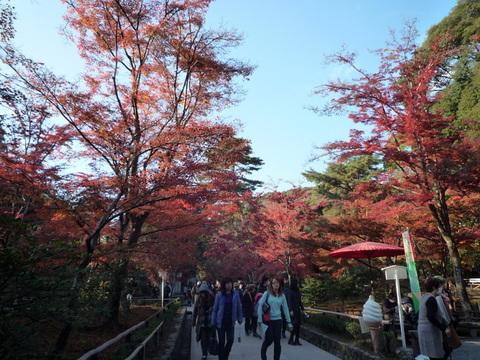 2009年11月26日金閣寺北野天満宮 004.jpg