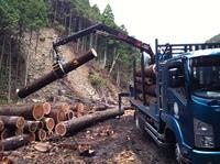 会社近くの木材搬出風景 005.jpgのサムネール画像
