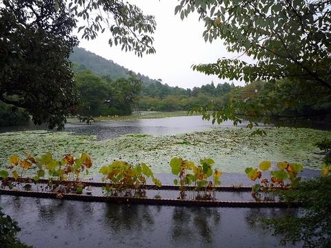 mami-2010年10月3~4日京都にて 021.jpg