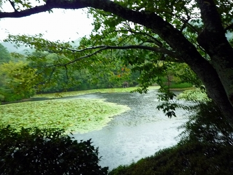 mami-2010年10月3~4日京都にて 022.jpg