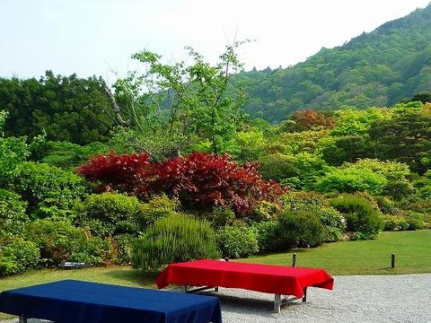 mami-2010年5月5日嵐山大河内山荘 012.jpg