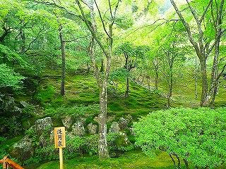 mami-mami-2010年10月3~4日京都にて 019.jpg