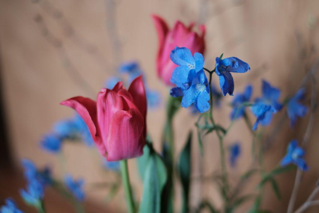 新入りレポ第5回:お花の稽古での気づき(後編):空間のデザイン