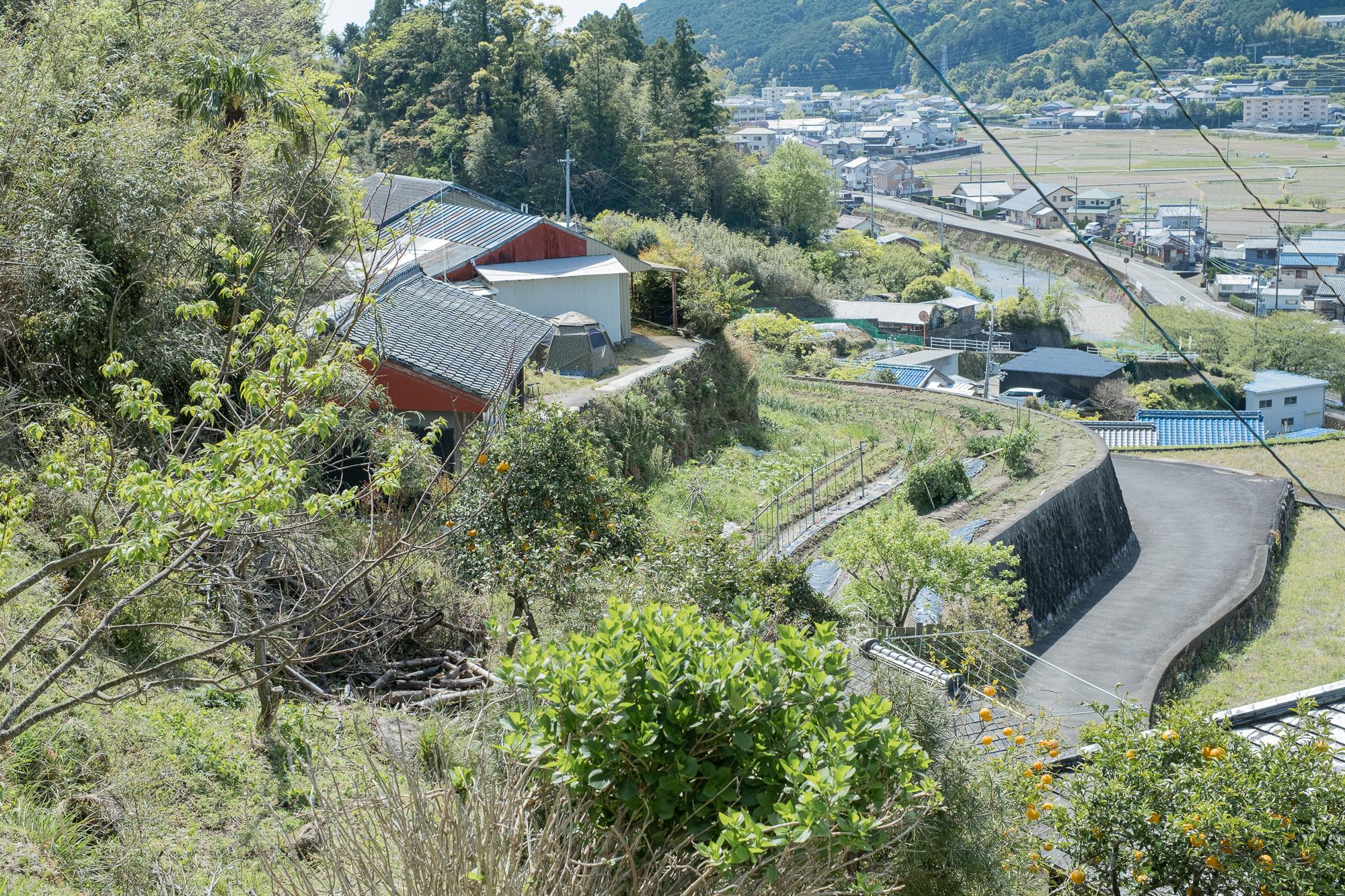 家の裏山からの景色。段々畑をきちんと守っているからこそ、井戸水が飲める。