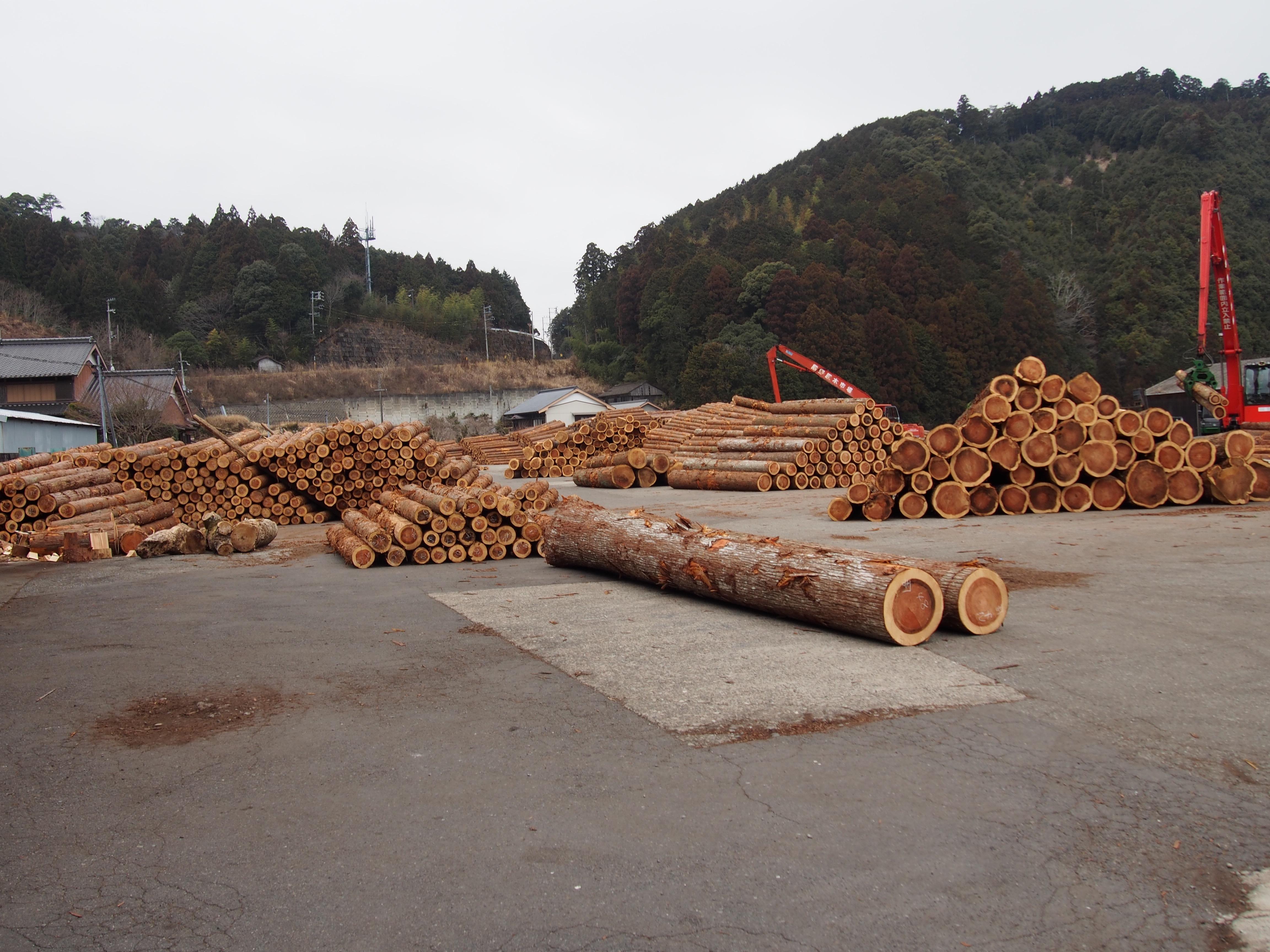 熊野の原木市場